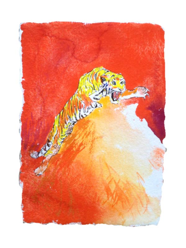 07.Tiger attacking. 45x31 cm. 2013. www.uffechristoffersen.net